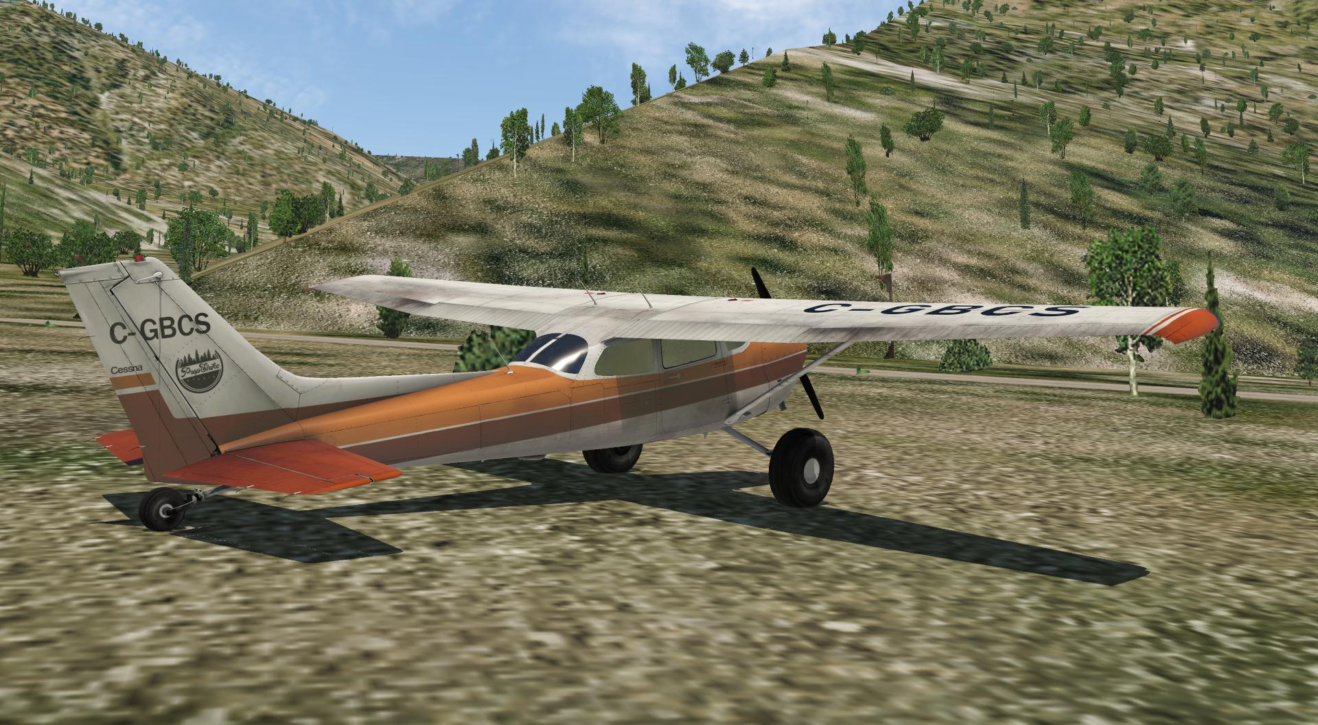 Bush Flying: Definición